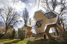 Awesome hive structure #residence