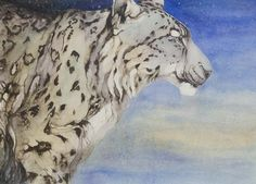 Jackie Morris's snow animals — the guardian (UK) Unusual Animals, Animals Beautiful, Dad Drawing, Fashion Painting, Watercolor Sketch, Process Art, Watercolor Animals, Pictures To Draw, The Guardian