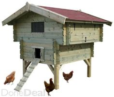 Jami this is for you! Outdoor Fun, Outdoor Decor, Hen House, Raising Chickens, Chickens Backyard, Healthy Chicken, Homesteading, Your Pet, Home Improvement