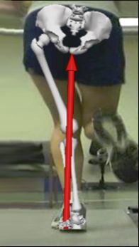 Could Lack of Hip Strength Increase Your Risk of Shin Splints? The Latest Research on the Relationship Between Hip Strength and Shin Splints