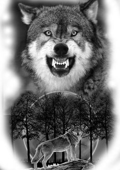 Wolf Tattoos Men, Cool Arm Tattoos, Best Sleeve Tattoos, Wolf Sleeve, Wolf Tattoo Sleeve, Wolf Photos, Wolf Pictures, Wolf And Moon Tattoo, Wolf Painting