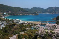 Ohama Coast | Anan | Japan Hoppers - Japan Travel Guide
