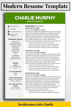 2 Page Resume Sample Impressive Modern Resume Design Template For Word 2Page Resume Template And .