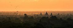 Burma - Bagan Birds Flying
