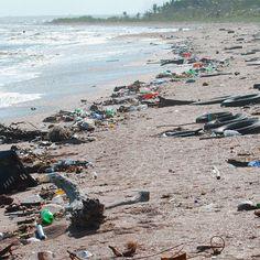 Con le frasi sull'inquinamento non possiamo fare altro che pensare alla natura che danneggiamo e ai cambiamenti che determiniamo con le nostre azioni.