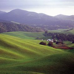 Steinbeck country: Salinas Valley, Calif.