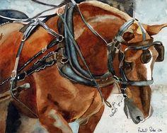 Print Belgian Haflinger Draft Horse by Rachel Parker
