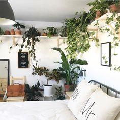 A good way to add plants to a very small bedroom. ᴘʟᴀɴᴛs ɪɴ ᴀ ᴛɪɴʏ ʜᴏᴍᴇ дом Room Decor Bedroom, Home Bedroom, Bedrooms, Bedroom Plants Decor, Bedroom Inspo, Plant Decor, My New Room, My Room, Very Small Bedroom