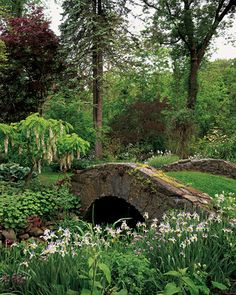 "See the ""Against the Odds"" in our Garden Tours gallery Beautiful Landscapes, Beautiful Gardens, Nature Aesthetic, Flowering Shrubs, White Gardens, Garden Structures, Dream Garden, Garden Bridge, Garden Inspiration"