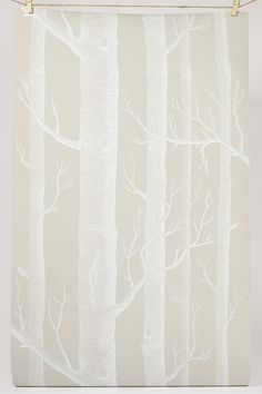 Creamy Background and White Trees