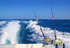 Gone Fishing In Lido Key- Jennette Properties Blog