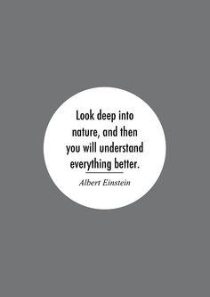 Albert Einstein nature quotation: Look deep into nature,& then you will understand everything better-