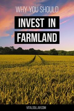 Farmland may not be the first investment opportunity that you think of, but history shows that farmland can be an excellent alternative investment. For the past four decades, farmland investments have outperformed real estate, stocks, and bonds. FarmTogether is a crowdfunding platform that allows accredited investors to easily invest in farmland in the U.S. Saving For Retirement, Early Retirement, Best Interest Rates, Get Out Of Debt, Managing Your Money, Real Estate Investing, Make More Money, Finance Tips