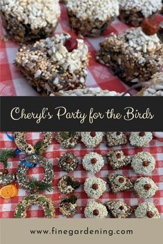 After the wreaths and arrangements are done, Cheryl creates garden crafts for her flying neighbors. Diy Garden Projects, Garden Crafts, Garden Art, Common Garden Plants, Bird Seed Ornaments, England Winter, Fine Gardening, Garden Photos, Winter Garden