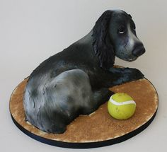 Spaniel fun in the sand! - Cake by Happyhills Cakes Crazy Cakes, Fancy Cakes, Unique Cakes, Creative Cakes, Puppy Dog Cakes, Doggie Cake, Art Deco Cake, Cake Art, Sand Cake
