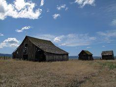 Old barns Eastern Oregon by Jason Karn, via Flickr
