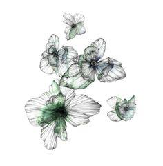 Piet Boon Styling by Karin Meyn   Beautiful green hand drawn flowers