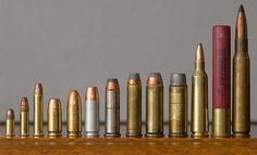 small to large .22 short, .22 long rifle, .22 magnum, .380 auto, 9mm Parabellum, 9mm Largo, .38 Special, .357 Magnum, .44 Magnum, .45 Colt, .22-250 Remington, 410 bore shotgun, and .30-06.