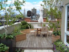 Sponzilli Landscape Group | Green Roofs and Green Walls - Sponzilli Landscape Group