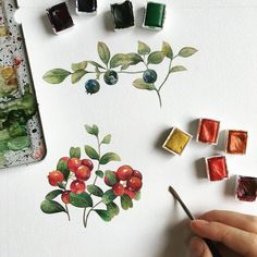 Beautiful berries by @namwannpastel #art_we_inspire #illustration #graphics by art_we_inspire