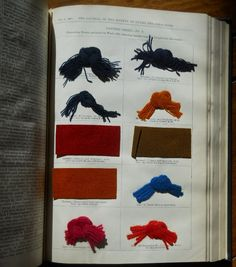 Journal of the Society of Dyers and Colourists, vol. 5, no. 11 (November 1889) #dyesamples #wool