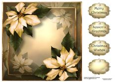 Cream Poinsettias For Christmas 8x8 by Anne Lever This lovely 8x8 square quick topper features gorgeous cream poinsettias. It has three greetings and a blank greetings tile.