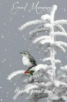 Lonely bird in the snow gif