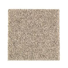 PetProof Carpet Sample – Maisie II – Color Taupe Essence Texture 8 in. x 8 – The Home Depot – shaw carpet