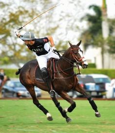 ...and polo in the summers!