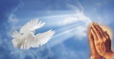 Rugăciune către Sfântul Duh. Este una foarte puternică, grabnic ajutătoare și mult folositoare. Bird, Animals, Image, Animales, Animaux, Birds, Animal, Animais