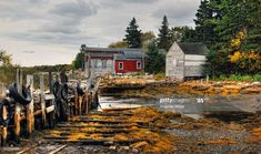 Boat Sheds at East Chester, NS, Boat Shed, Nova Scotia, Chester, Sheds, Fall, Shed Houses, Autumn, Backyard Sheds, Coops