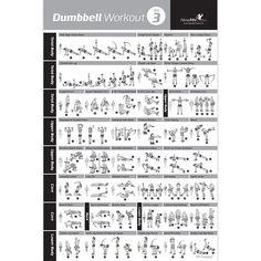 Dumbbell Exercise Poster Vol 3