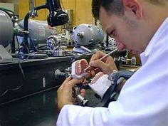 How to start career as a Dental Lab Technician?