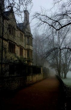 "coffee-and-wood: ""Oxford """