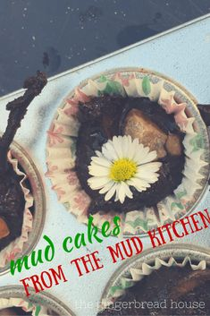 mud cakes from the m