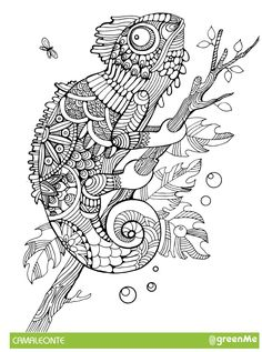 Mandala Animali Da Colorare 2