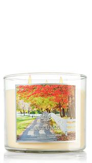 Autumn Candle- Bath and Body Works