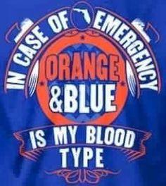 My blood type Fla Gators, Florida Gators College, Uf Gator, Florida Gators Football, College Football, Gator Basketball, Baseball, Florida Gators Wallpaper, Florida Girl