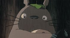 "I got Totoro from ""My Neighbor Totoro""! Which Anime Icon Is Your Kindred Spirit?"