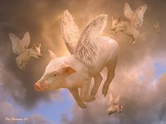 Believe in flying pigs!