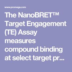 The NanoBRET™ Target Engagement (TE) Assay measures compound binding at select target proteins in intact cells, in real time. The assay uses bioluminescence resonance energy transfer (BRET), achieved by transferring the luminescent energy from NanoLuc® luciferase to the fluorescent tracer that is bound to the target protein-NanoLuc® fusion. This energy transfer makes it possible to directly measure compound binding affinity as well as compound-target residence time.