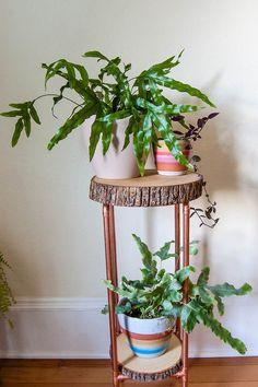 bakır boru ve ahşap dilim bitki standı