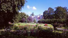 Rose garden in Hatanpää Arboretum, Tampere, Finland