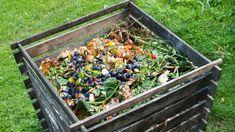 Jak udělat kompost How To Start Composting, Composting 101, How To Make Compost, Making Compost, Composting Process, Composting Toilet, Compost Barrel, Compost Tea, Garden Compost