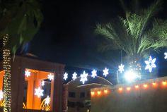 Town of Chandler. Holiday Lights, Arizona, Chandelier, Ceiling Lights, Stars, Lighting, Home Decor, Candelabra, Decoration Home