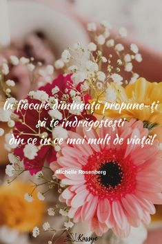Good Morning Post, Good Morning Coffee, Good Vibes, 8 Martie, Happy Birthday, Quotes, Gardening, Image, Happy Brithday