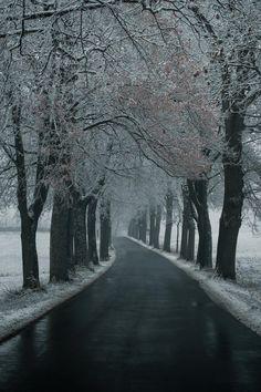 #cold #winter #avenue #snow #bavaria #franconia www.artechs.eu