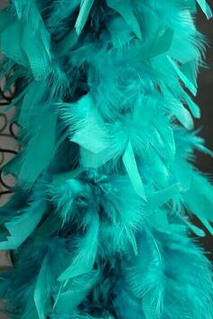 *Teal Boa / Feathers
