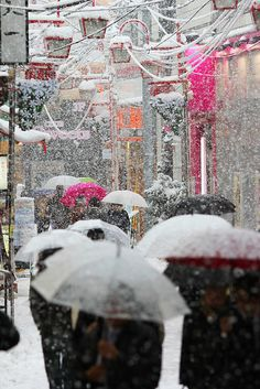 Snow in Tokyo January 14,2013 by japantwo, via Flickr
