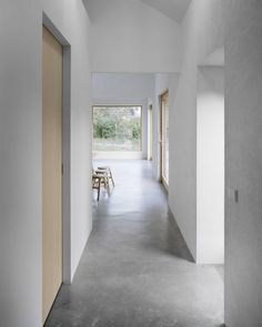 Minimalist interior design with concrete floors and natural wood accents